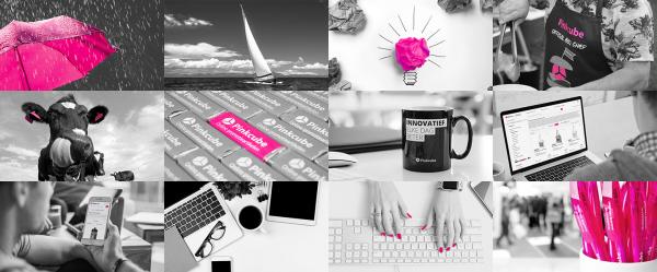 Bekijk hier de nominatiepagina van Pinkcube